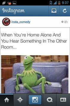 Home alone. Kermit memes