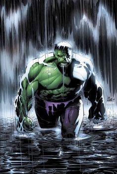 The Hulk by Lee Weeks