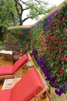 Vertical Flower Garden #backyards, #flowers, #pinsland, https://apps.facebook.com/yangutu/