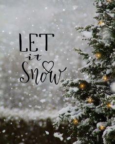 Let It Snow - Snow ! let it snow - neige ! let it snow - nieve Christmas Mood, Noel Christmas, Christmas Quotes, Christmas Pictures, White Christmas Snow, Winter Wonderland Christmas, Snow Pictures, Christmas Is Coming, Christmas Lights
