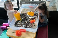 Lesson 5: God Made Plants.  Plant sensory bin. Dried beans and dirt to role play planting flowers.