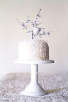 Wonderful Winter Cake Decorating Tips by award-winning photographer and hobby baker Isabel Gomes.  Photo copyright I. Gomes.