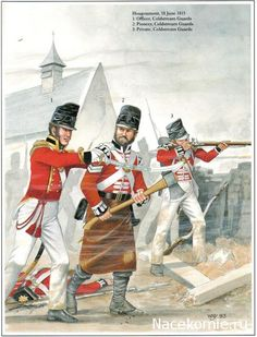 NAP- Britain: Wellington's Foot Guards Hougoumont, 18 June 1815 1_Officer, Coldstream Guards 2_Pioneer, Coldstream Guards 3_Private, Coldstream Guards, by William Younghusband.