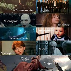 harry potter funny | Tumblr
