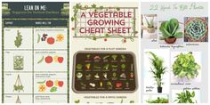 9 Gardening Diagrams Every Gardener Needs to Pin  - CountryLiving.com