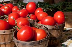 Delicious Obsessions: How to Freeze Fresh Tomatoes | www.deliciousobsessions.com