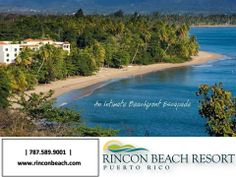 RINCON BEACH RESORT - On mile-long Almirante Beach on the western coast of Puerto Rico, this resort offers dozens of ways to enjoy the sun, sand, and surf . Phuket, San Juan Hotels, Karon Beach, Western Coast, Enjoying The Sun, Top Hotels, Resort Spa, Beach Resorts, Puerto Rico
