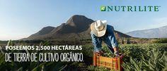 Venta de productos por catálogo. Oportunidad de Negocio - Amway Colombia.