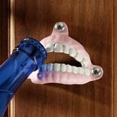False Teeth Cast Iron Bottle Opener from Design Toscano Dental Humor, Dental Hygiene, Dental Care, Dental Quotes, Dental Assistant, Open Set, Wall Mounted Bottle Opener, Beer Opener, Cast Iron