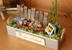 Small Balcony Garden, Pastel Decor, Crafts For Seniors, Mini Craft, Miniature Plants, Succulent Terrarium, How To Preserve Flowers, Vintage Crafts, Plant Design
