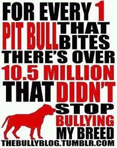 Pitbulls!