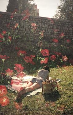 She dreamt of flowers in the crannied wall...