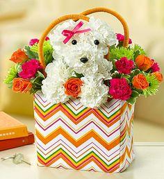 arranjo de flores pro dia das maes com caras de cachorros
