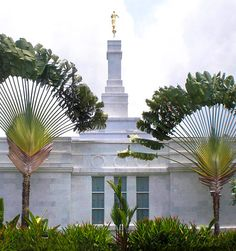 Love the trees - Kona Hawaii Temple of The Church of Jesus Christ of Latter-day Saints. Lds Temple Pictures, Lds Pictures, Church Pictures, Hawaii Temple, Lds Memes, Lds Quotes, Angel Moroni, Later Day Saints, Temple Gardens