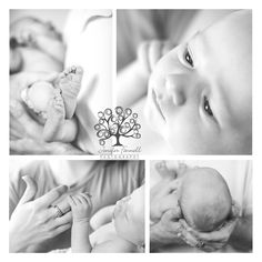 Amazing Blessing | Newborn Session | Copyright Jenifer Fennell Photography 2013  www.jeniferfennellphotography.com