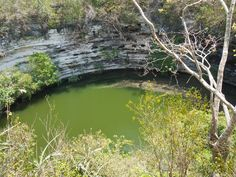 Sacred Cenote -Well of the Itzas