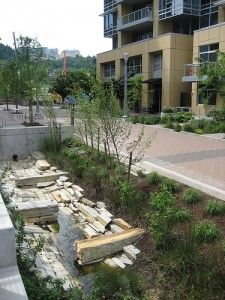 Portland uses green streets, ecoroofs, trees, and other green infrastructure to manage stormwater, protect water quality and improve watershed health.  Urban streams, forests, and wetlands manage stormwater naturally and are part of Portland's green infrastructure.