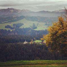 #würzbrunnen #emmental by regiegee