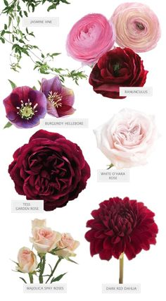 burgundy and pink bouquet flower guide wedding flowers Can't Stop Staring At this Burgundy Bouquet by Seed Floral Wedding Flower Arrangements, Wedding Centerpieces, Floral Arrangements, Wedding Decorations, Carnation Centerpieces, Centerpiece Ideas, Table Decorations, Burgundy Bouquet, Burgundy Flowers