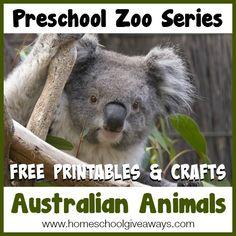 Preschool Zoo Series FREE Printables and Crafts: Australian Animals - Homeschool Giveaways Rhyming Activities, Science Activities For Kids, Animal Activities, Bears Preschool, Australia Animals, Kindergarten, Animal Science, Animal Habitats, Animal Projects