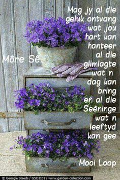 Good Morning Good Night, Good Morning Wishes, Good Morning Quotes, Morning Greetings Quotes, Morning Messages, Family Qoutes, Lekker Dag, Evening Greetings, Afrikaanse Quotes
