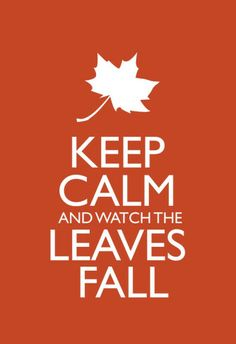 Keep Calm and Watch the Leaves Fall