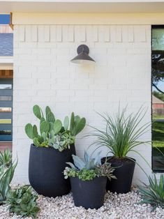 Bigger can be better when it comes to containers. See why you should choose large flower pots and urns to bump up your landscape's style.