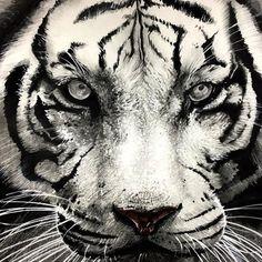 #호랑이#동물#자연물#디자인#그림#입시미술#미대입시#입시미술학원#흑백