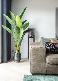 #interiorstyling #wooninspiratie #interiordesign #binnenkijker #inspiratie #interieur #gordijnen #woonkamer #interieur #tijdloos #sfeervol #planten #bystijl #trends #wonenHOME MADE BY_STIJL BINNENKIJKER | WOONKAMER | INSPIRATIE | SFEERVOL | INTERIEUR TRENDS | TIJDLOOS | STOEL | BANK | LAMP | GORDIJNEN | PLANTEN | GROEN