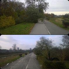 Przycięto drzewo stwarzające zagrożenie na trasie wzdłuż Bystrzycy. Czas ok 14 dni. #lublin #rower