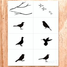 Birds 8 Pack , $18, now featured on Fab.