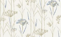 Gardinum (110557) - Harlequin Wallpapers - A delightful sketch effect wallcovering with grasses and and seedheads- shown in chalk, wedgewood and gold. Other colourways are available. Please request a sample for a true colour match. Paste the wall product.