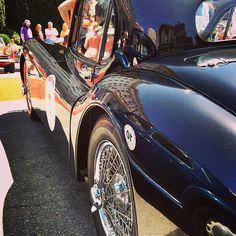 1952 Jaguar XK120 :: California Mille 2013