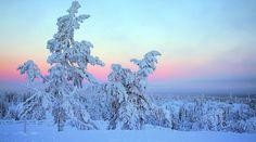 Sokos Hotels | Levi | Lappi | hiihtoloma | hotellit | huonevaraus | hotellitarjous | kokous - sokoshotels.fi
