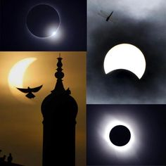 Top left: moon passes between sun & earth during solar eclipse as seen in Changsha, Hunan province, China; Bottom left: partial solar eclipse silhouettes birds surrounding minaret of shrine of Sufi Saint Bah-ud-din Zakria in Multan, Pakistan; Orion Nebula, Andromeda Galaxy, Solar Eclipse Photography, Full Solar Eclipse, Eclipse Tattoo, Nebula Tattoo, Sufi Saints, Nebula Wallpaper, Astronomical Observatory