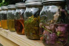 Vodka Tinctures  - Herbal
