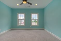 Bedroom with light blue walls and two windows.