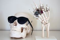 suporte de caveira, para óculos e anéis