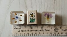 LOT 3 Wooden & Epoxy Mounted Rubber Stamps Daisy Real Flowers Ladybugs Clear  #Assorted