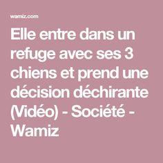 Elle entre dans un refuge avec ses 3 chiens et prend une décision déchirante (Vidéo) - Société - Wamiz