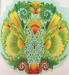 1010 Best Millie Marotta Colourings Images On Pinterest