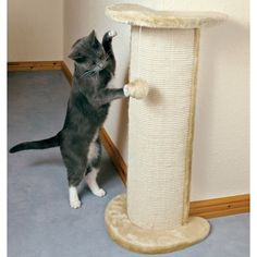 CAT SCRATCHING COLUMN - TRIXIE 'LORCA' CAT SCRATCHER - PROTECT WALLPAPER! - great for small homes!