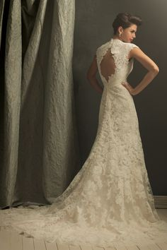 Wedding Dresses: Beautiful Lace Dress