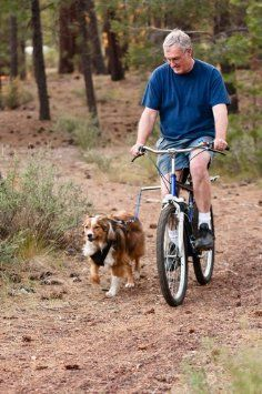 Amazon.com: Petego Walky Dog Hands-Free Bicycle Leash: Pet Supplies... want this for our Weimaraner!