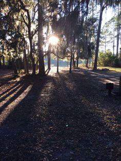 Ocala National Forest Camp Lakeshore