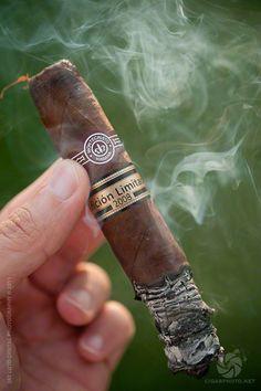 Cigar smokes