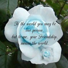 Citation d'amitié - Friendship
