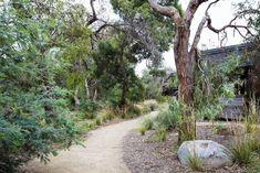 Photograph portfolio of native gardens and landscapes designed and built by Australian Landscape designer Sam Cox. Landscaping With Rocks, Modern Landscaping, Front Yard Landscaping, Australian Garden Design, Australian Native Garden, Drought Tolerant Landscape, Garden On A Hill, Dry Garden, Modern Landscape Design