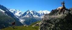 Tour du Mont Blanc – France, Italy and Switzerland: hike through mountain passes, snowfields, lush forests, glacial valleys and secluded Alpine villages over a span of about 10 days. Oh The Places You'll Go, Places To Visit, Paradise Falls, Alpine Village, Walking Holiday, Skinny Mom, Day Hike, Adventure Is Out There, Hiking Trails