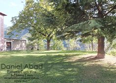Daniel's European Food, Wine & History Tours: Saorge Baroque Art and Music Festival - The Shady Lawn by the Monastery